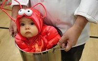 Babyshrimpcostume571